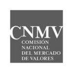 logo-cnmv2